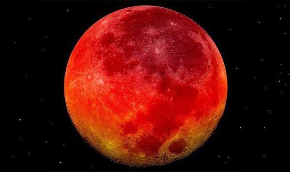 rosie de luna
